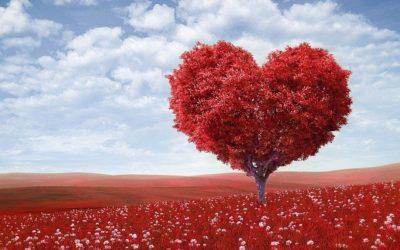 Partnerschaft und Valentinstag